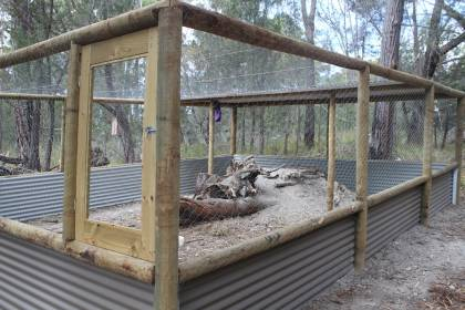 Wombat Enclosure part 2