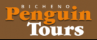 penguin tours