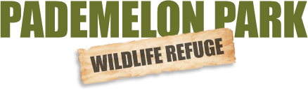 Pademelon Park Wildlife Refuge logo